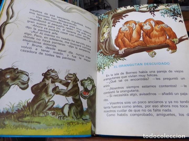 Libros de segunda mano: CUENTOS AZULES: MARIA PASCUAL (TAPA DURA, TORAY) - Foto 6 - 152729497