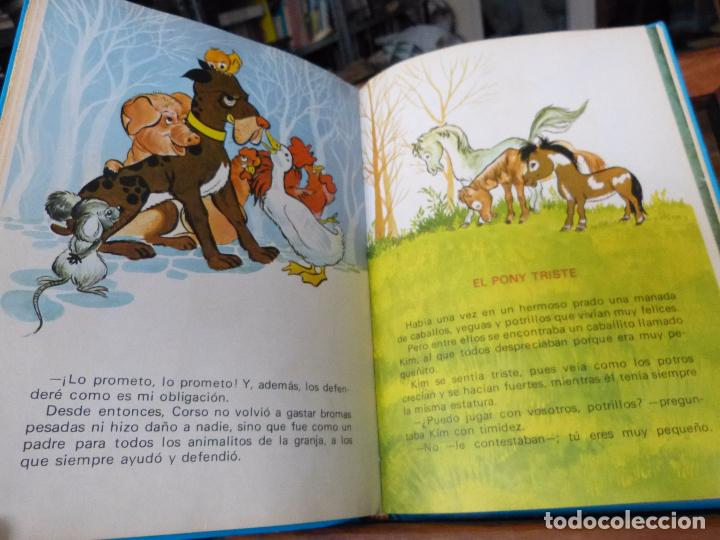 Libros de segunda mano: CUENTOS AZULES: MARIA PASCUAL (TAPA DURA, TORAY) - Foto 7 - 152729497