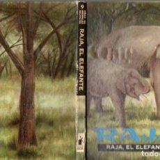Libros de segunda mano: RAJA EL ELEFANTE (VIDAS DE ANIMALES SALVAJES MOLINO, 1959). Lote 54932565