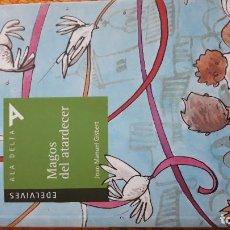 Libros de segunda mano: MAGOS DEL ATARDECER ELDEVIVES ALA DELTA JOSE MANUEL GISBERT. Lote 101109999