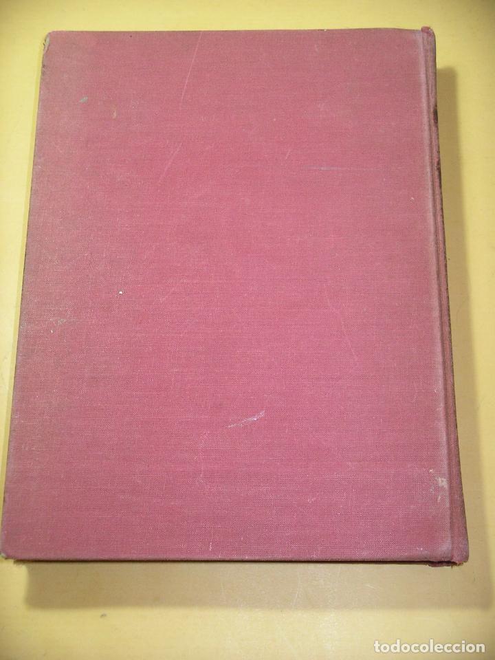 Libros de segunda mano: Cuentos de Andersen ilustrados por Arthur Rackham, ed. Juventud, año 1968, C9 - Foto 2 - 120371287