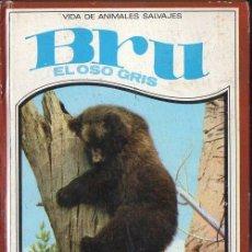 Libros de segunda mano: RUTLEY : BRU EL OSO GRIS (VIDAS DE ANIMALES SALVAJES MOLINO, 1967). Lote 126731252