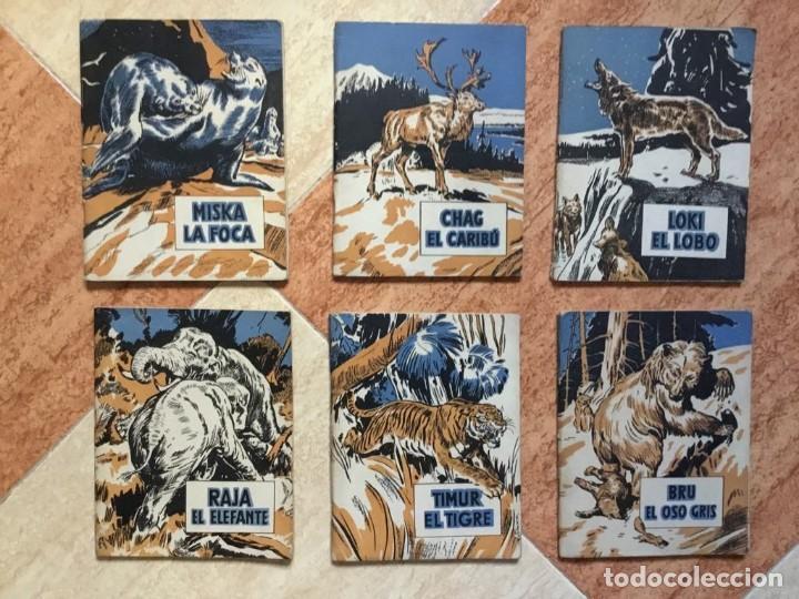 Libros de segunda mano: Magnífico lote de 6 libros Vidas de animales salvajes, C. Bernard Rutley - El Molino, 1940 - RARO - Foto 2 - 128920347