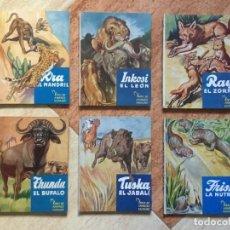 Libros de segunda mano: MAGNÍFICO LOTE DE 6 LIBROS VIDAS DE ANIMALES SALVAJES, C. BERNARD RUTLEY - ED. EL MOLINO - 1950 RARO. Lote 128920815