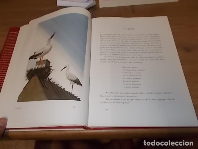 Libros de segunda mano: HANS CHRISTIAN ANDERSEN. CONTES .IL·LUSTRATS PER NIKOLAUS HEIDELBACH. GALÀXIA GUTENBERG . 2004. - Foto 9 - 132123758