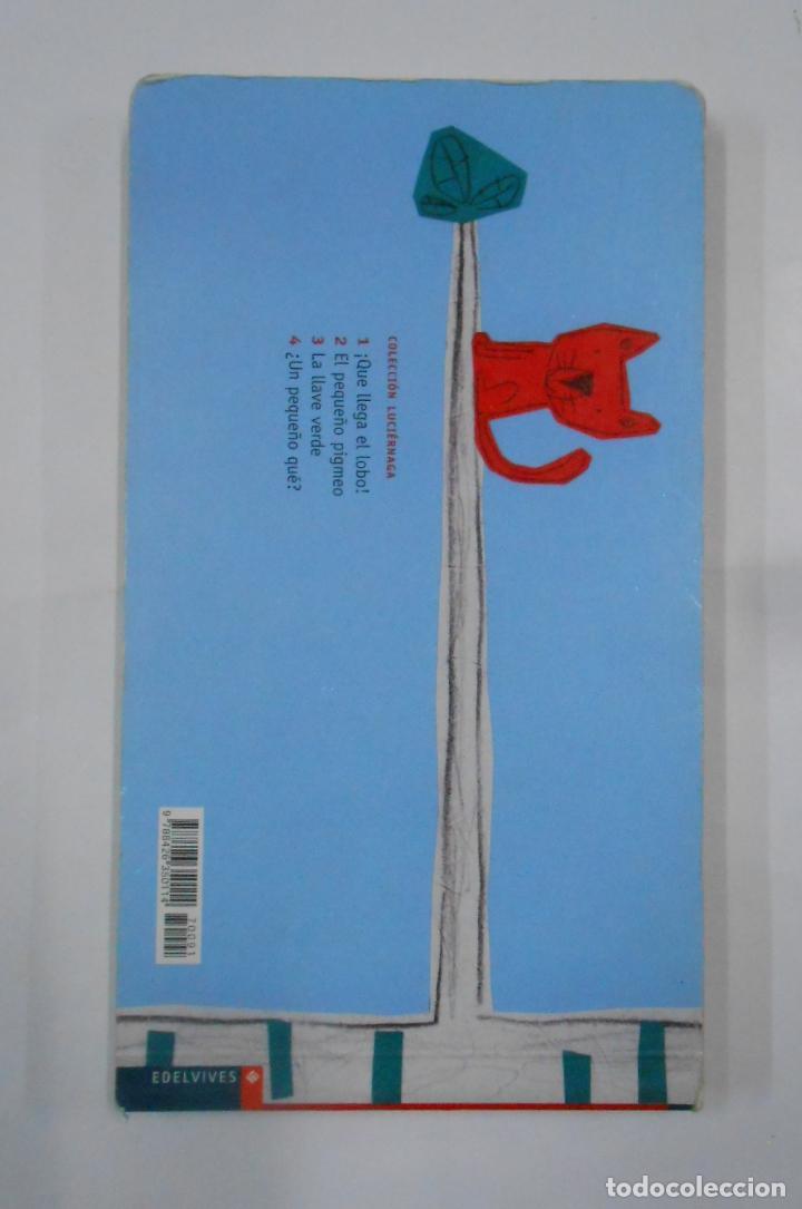 Libros de segunda mano: ¿UN PEQUEÑO QUÉ? - CARRIER, ISABELLE. COLECCION LUCIERNAGA Nº 4. TDK351 - Foto 2 - 133242006