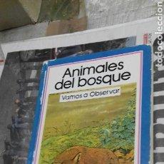 Libros de segunda mano: ANIMALES DEL BOSQUE. VAMOS A OBSERVAR.. Lote 144626246