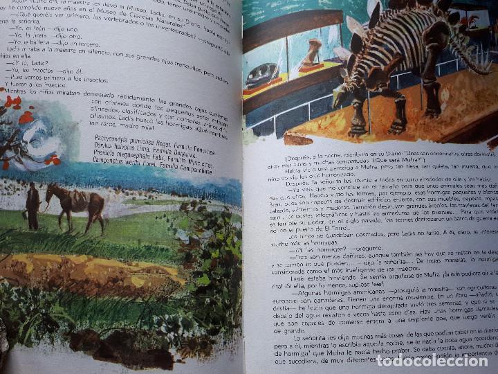Libros de segunda mano: El segundo verano de Ladis - Sánchez-Silva, José María - Ed. Marfil - 1968 - Foto 7 - 145161606