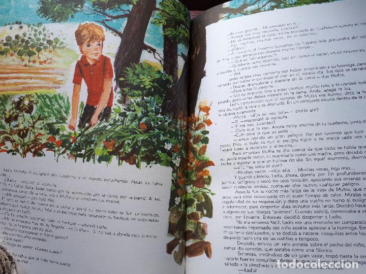 Libros de segunda mano: El segundo verano de Ladis - Sánchez-Silva, José María - Ed. Marfil - 1968 - Foto 8 - 145161606