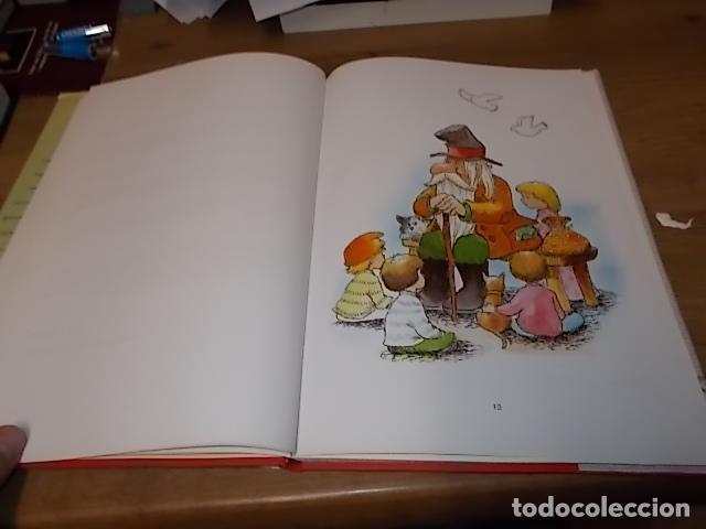 Libros de segunda mano: CUENTOS DE MALLORCA. DEDICATORIA Y FIRMA ORIGINAL DE LA AUTORA E ILUSTRADORA NANCY J. GRIMM. - Foto 6 - 153242546