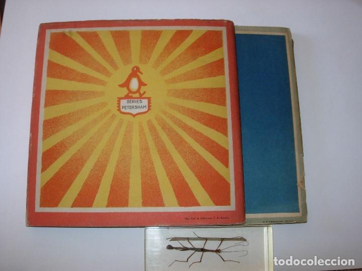 Libros de segunda mano: EL LIBRO DEL VESTIDO / EL LIBRO DEL ARROZ / MAUD Y MISKA PETERSHAM / SERIES PETERSHAM - Foto 2 - 156684266