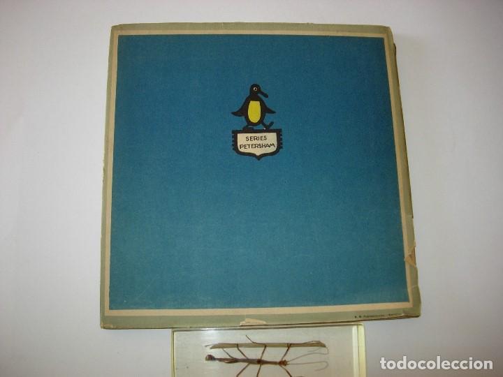 Libros de segunda mano: EL LIBRO DEL VESTIDO / EL LIBRO DEL ARROZ / MAUD Y MISKA PETERSHAM / SERIES PETERSHAM - Foto 8 - 156684266