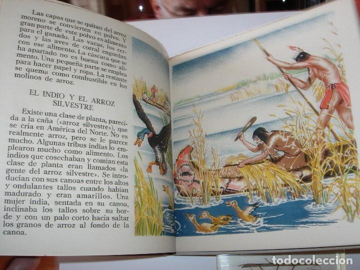 Libros de segunda mano: EL LIBRO DEL VESTIDO / EL LIBRO DEL ARROZ / MAUD Y MISKA PETERSHAM / SERIES PETERSHAM - Foto 15 - 156684266