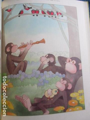 Libros de segunda mano: historia de los bonobos con gafas - adela turin - ilustraciones nella bosnia - 1ª ed. MUY BUEN ESTAD - Foto 14 - 263109290