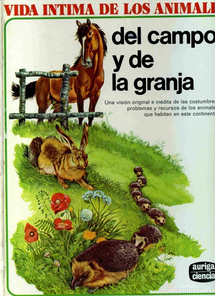LIBRO - VIDA ÍNTIMA DE LOS ANIMALES DEL CAMPO Y DE LA GRANJA - (Libros de Segunda Mano - Literatura Infantil y Juvenil - Cuentos)