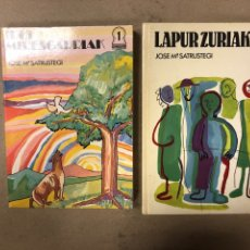 Libros de segunda mano: IPUI MIRESGARRIAK ETA LAPUR ZURIAK. 2 TOMOS. JOSE Mª SATRUSTEGI. IRUDIAK: XABIER EGAÑA. Lote 168215740