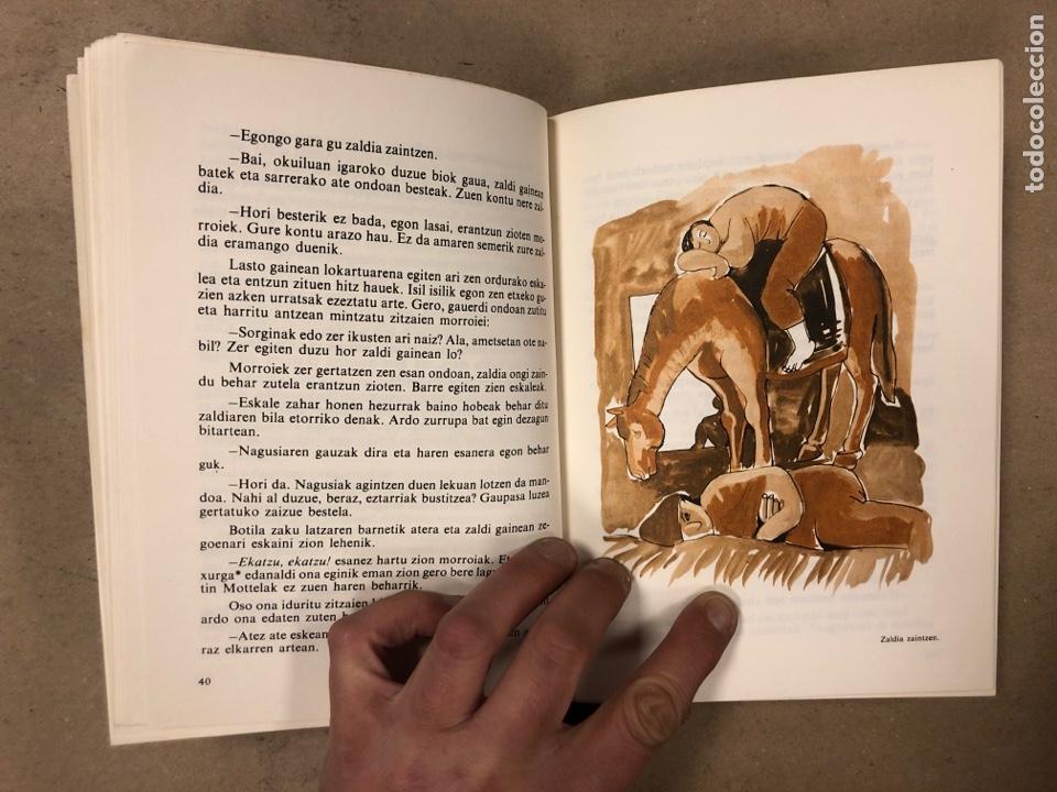 Libros de segunda mano: IPUI MIRESGARRIAK ETA LAPUR ZURIAK. 2 TOMOS. JOSE Mª SATRUSTEGI. IRUDIAK: XABIER EGAÑA - Foto 12 - 168215740