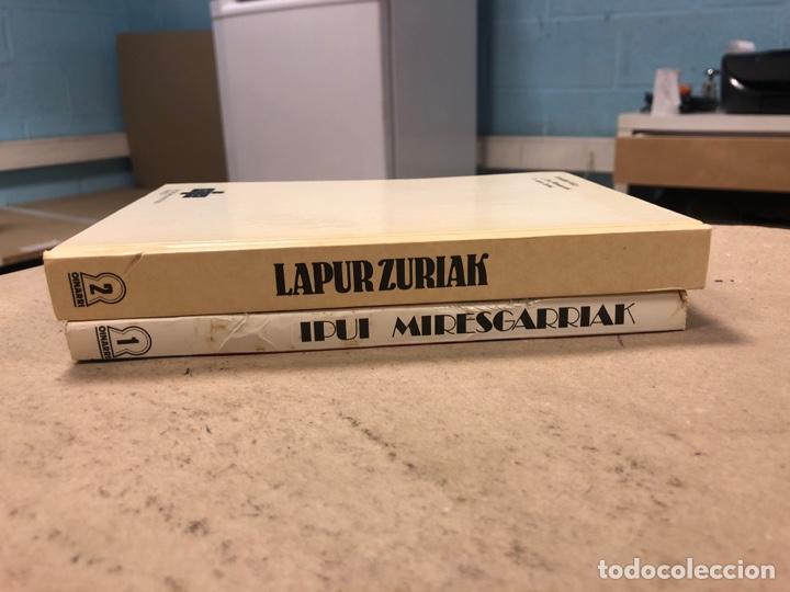 Libros de segunda mano: IPUI MIRESGARRIAK ETA LAPUR ZURIAK. 2 TOMOS. JOSE Mª SATRUSTEGI. IRUDIAK: XABIER EGAÑA - Foto 15 - 168215740
