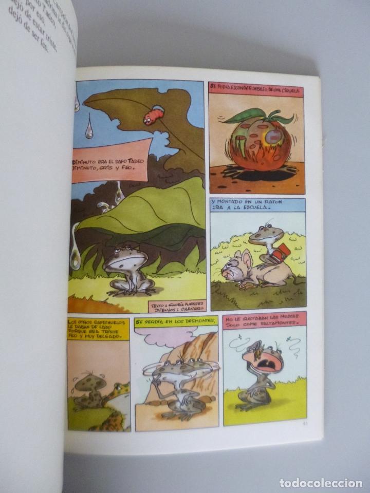 Libros de segunda mano: GLORIA FUERTES // LA PÁJARA PINTA // CUENTOS EN VERSO // 1972 // PRIMERA EDICIÓN - Foto 4 - 173815528