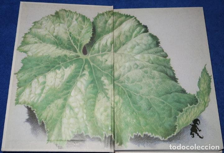 Libros de segunda mano: CUENTOS DE LA CHINA MILENARIA - ANÓNIMO - ANAYA (1986) - Foto 2 - 174025033
