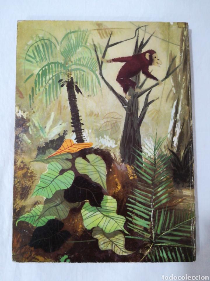 Libros de segunda mano: CUENTOS POPULARES AFRICANOS - EDITORIAL MOLINO - 1958 - Foto 2 - 174437399