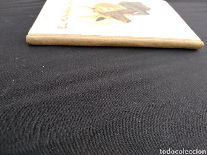 Libros de segunda mano: Lote 5 libros Biblioteca Selecta años 30/40 - Foto 12 - 178172427
