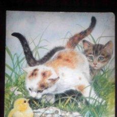 Libros de segunda mano: PRECIOSO LIBRO DE ANIMALES - HEMMA PUBLISHING. Lote 183413925