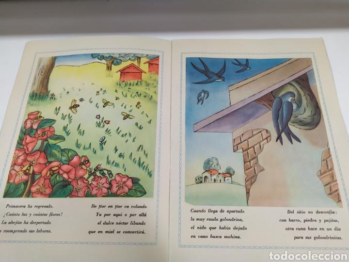 Libros de segunda mano: Cuento infantil ediciones Paulinas año 1958 - Foto 4 - 183865831