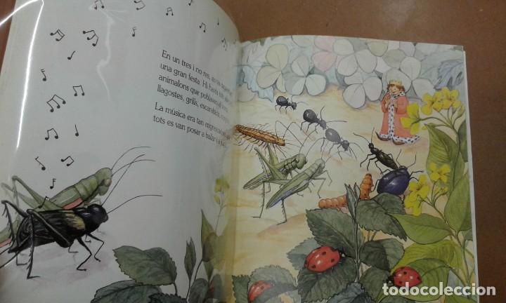 Libros de segunda mano: El rei petitet per Marcelas Coquillat edit. edebe - Foto 2 - 195410872
