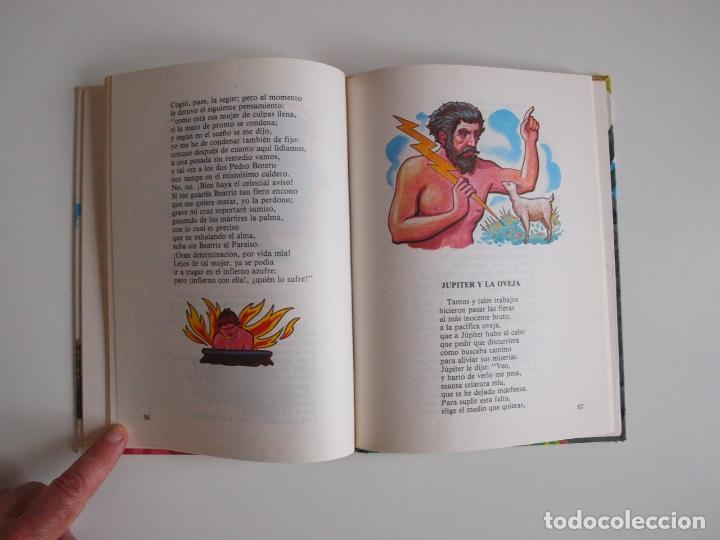 Libros de segunda mano: FÁBULAS DE HARTZENBUSCH - JUAN EUGENIO HARTZENBUSCH - Nº 8 - SUSAETA REIMPRESIÓN 1983 - Foto 5 - 203245520