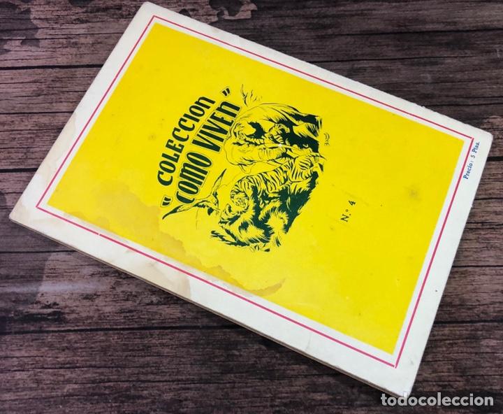 Libros de segunda mano: COLECCION COMO VIVEN, COMO VIVEN LOS ANIMALES EN EL MAR, NUMERO 4, (EDITORIAL CIES, VIGO) - Foto 3 - 206325546