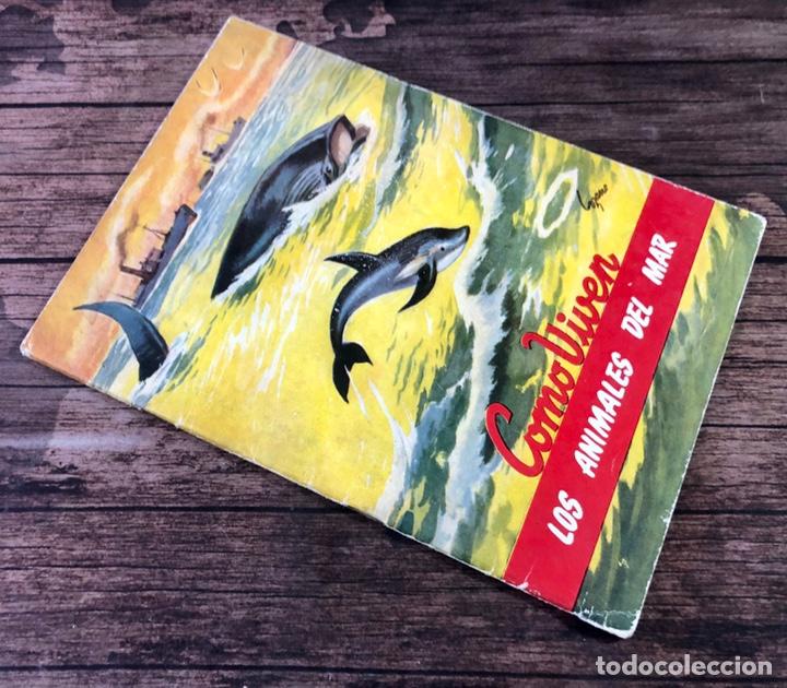 COLECCION COMO VIVEN, COMO VIVEN LOS ANIMALES EN EL MAR, NUMERO 4, (EDITORIAL CIES, VIGO) (Libros de Segunda Mano - Literatura Infantil y Juvenil - Cuentos)