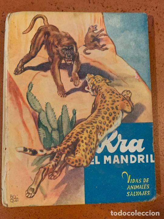 KRA EL MANDRIL. ANTIGUO CUENTO VIDAS DE ANIMALES SALVAJES. EDITORIAL MOLINO (Libros de Segunda Mano - Literatura Infantil y Juvenil - Cuentos)