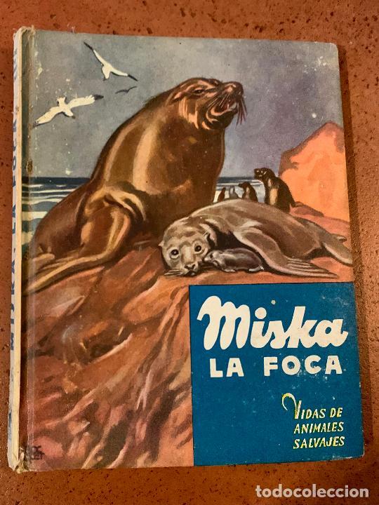 MISKA LA FOCA. ANTIGUO CUENTO VIDAS DE ANIMALES SALVAJES. EDITORIAL MOLINO (Libros de Segunda Mano - Literatura Infantil y Juvenil - Cuentos)