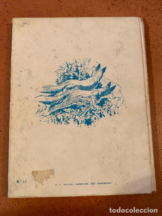 Libros de segunda mano: RAY EL ZORRO. Antiguo cuento VIDAS DE ANIMALES SALVAJES. Editorial Molino - Foto 3 - 206389592