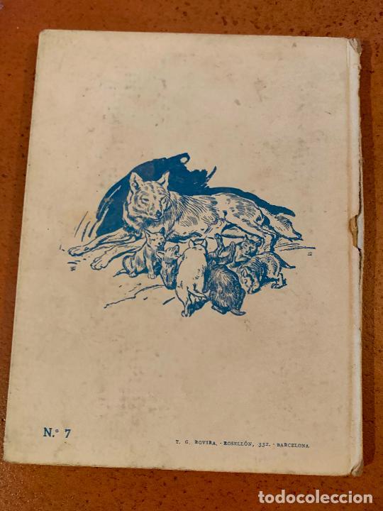 Libros de segunda mano: LOKI EL LOBO. Antiguo cuento VIDAS DE ANIMALES SALVAJES. Editorial Molino - Foto 3 - 206389746