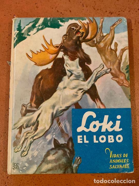LOKI EL LOBO. ANTIGUO CUENTO VIDAS DE ANIMALES SALVAJES. EDITORIAL MOLINO (Libros de Segunda Mano - Literatura Infantil y Juvenil - Cuentos)