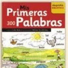 Libros de segunda mano: MIS PRIMERAS 300 PALABRAS. Lote 207287388
