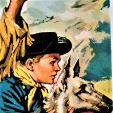 Libros de segunda mano: LIBRO COLECCION HEROES,1ª EDICION AÑO 1963, RIN TIN TIN,EL TRAMPERO COMANCHE,EN UN MAGNIFICO ESTADO. Lote 221883351