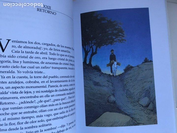 Libros de segunda mano: PLATERO Y YO DE Juan RAMON JIMÉNEZ Thomas Docherty ANAYA 2006 - Foto 5 - 226378602