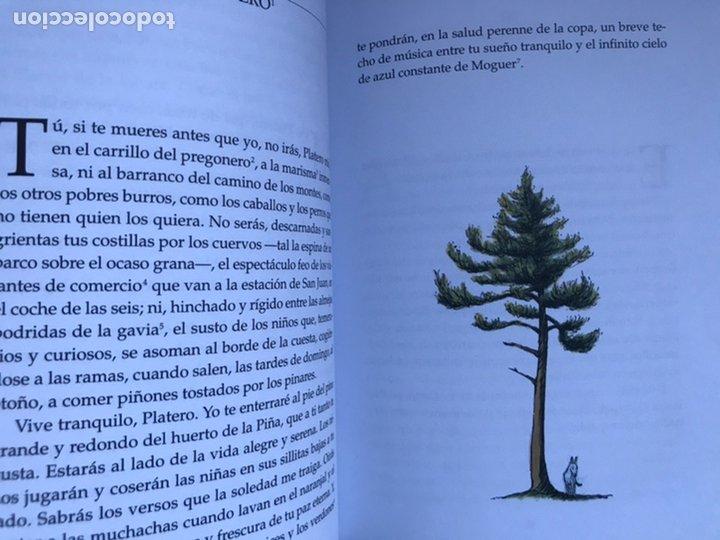 Libros de segunda mano: PLATERO Y YO DE Juan RAMON JIMÉNEZ Thomas Docherty ANAYA 2006 - Foto 6 - 226378602