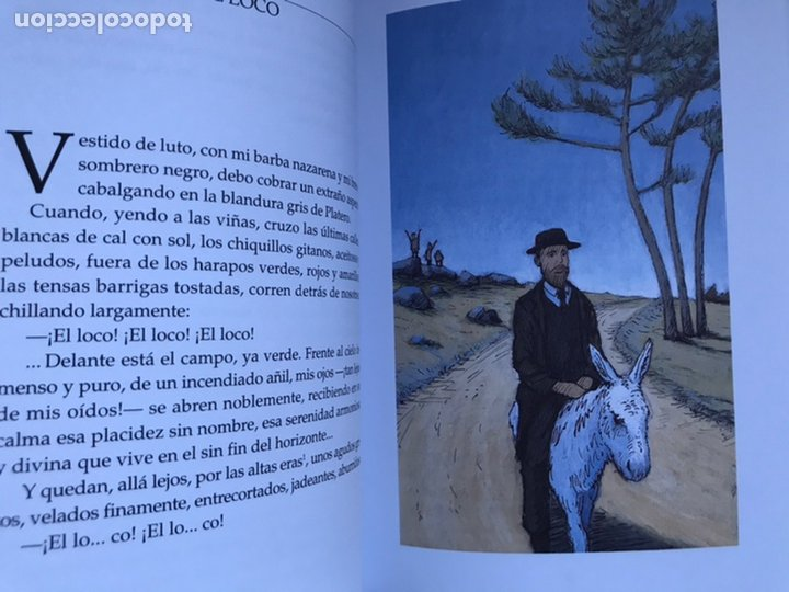 Libros de segunda mano: PLATERO Y YO DE Juan RAMON JIMÉNEZ Thomas Docherty ANAYA 2006 - Foto 7 - 226378602