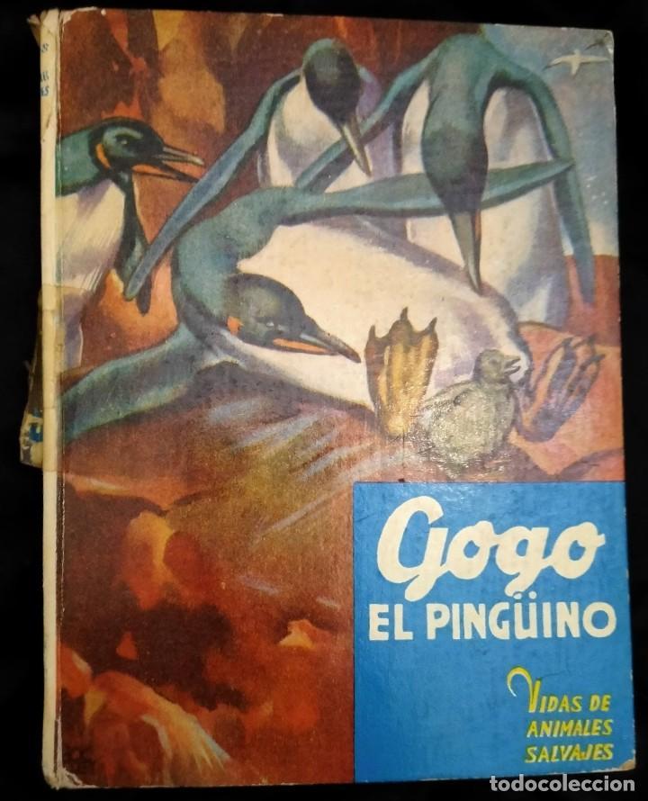 GOGO, EL PINGÜINO -C. BERNARD RUTLEY, STUART TRESILIAN -VIDAS DE ANIMALES SALVAJES Nº 8. ED. MOLINO (Libros de Segunda Mano - Literatura Infantil y Juvenil - Cuentos)