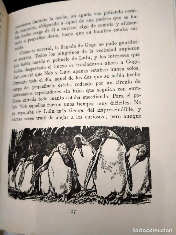 Libros de segunda mano: GOGO, EL PINGÜINO -C. BERNARD RUTLEY, STUART TRESILIAN -VIDAS DE ANIMALES SALVAJES Nº 8. ED. MOLINO - Foto 3 - 230785590