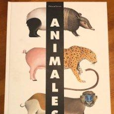 Libros de segunda mano: PITTAU & GERVAIS : ANIMALES (SM, 2011) POP UP FORMATO 28X39 CM.. Lote 233417450