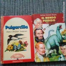 Libros de segunda mano: 2 LIBROS INFANTILES. Lote 245642010