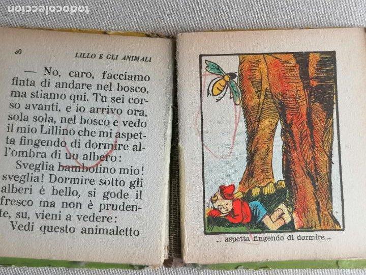 Libros de segunda mano: Lillo e gli animali Biblioteca baillla. 1934 56pp - Foto 3 - 245725500