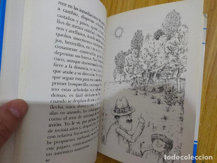 Libros de segunda mano: Tres pájaros de cuenta (Miguel Delibes) 1ª edición - Foto 6 - 262824735