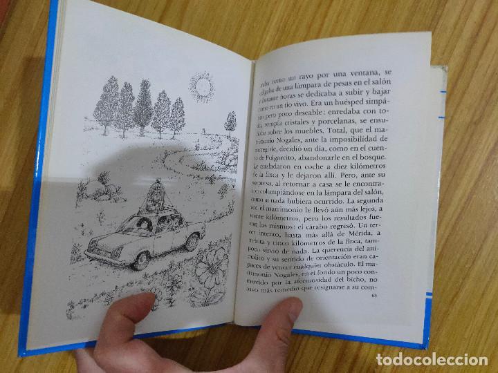 Libros de segunda mano: Tres pájaros de cuenta (Miguel Delibes) 1ª edición - Foto 7 - 262824735