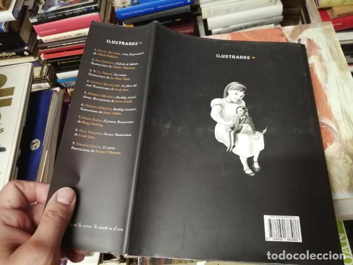 Libros de segunda mano: ALICIA EN EL PAÍS DE LAS MARAVILLAS . LEWIS CARROLL. ILUSTRACIONES MARTA GÓMEZ-PINTADO. 2009 - Foto 15 - 266975619